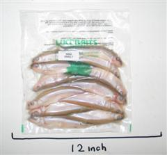 Mini Smelt 10-15 product image